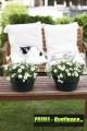Prima-květináče designový, barevný, plastový květináč, mísa Elho Green basics na terasu nebo do interiéru, bowl samozavlažovací plastové venkovní závěsné