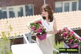 Prima-květináče designový, barevný truhlík se zavlažovacím systém, plastový truhlík, truhlíky ELHO samozavlažovací plastové venkovní závěsné