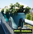 Prima-květináče Plastový květináč ELHO Corsica Flower Bridge 30 samozavlažovací plastové venkovní závěsné