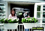 Prima-květináče Plastový truhlík ELHO Corsica Flower Bridge 60, závěsný květináč na balkon samozavlažovací plastové venkovní závěsné