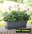 Prima-květináče barevné misky pod truhlíky, plastové, kvalitní od firmy Elho samozavlažovací plastové venkovní závěsné