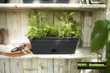 Prima-květináče designový, barevný, plastový truhlík Elho s integrovaným zavlažovacím systémem, truhlík na parapet nebo do kuchyně samozavlažovací plastové venkovní závěsné