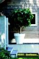 Prima-květináče Květináče ELHO Pure Round – moderní, venkovní, velké, vysoké, kulaté květináče, vonkajšie, veľké, kvetináče, květináče pro obce, restaurace a firmy samozavlažovací plastové venkovní závěsné