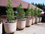 Prima-květináče samozavlažovací nádoby CUP – moderní, venkovní, velké, mrazuvzdorné, nárazuvzdorné, imitace kamene, velkoobjemové květináče Green City samozavlažovací plastové venkovní závěsné