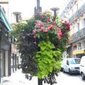 Prima-květináče samozavlažovací květinové mísy, závěsné sestavy na sloupy veřejného osvětlení – moderní výzdoba náměstí, ulic, květináče pro města a obce Green City samozavlažovací plastové venkovní závěsné
