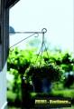 Prima-květináče Elho kvalitní držák na květináče (nástěnný) antracit samozavlažovací plastové venkovní závěsné