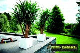 Prima-květináče Květináče ELHO Pure Soft Brick Wheels – moderní, venkovní, hranaté, velké, plastové obaly na květináče, květináče, vonkajšie, veľké, květník na terasu samozavlažovací plastové venkovní závěsné