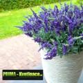 Prima-květináče keramický květináč Capi® Nature – moderní, interiérové, venkovní, designové, originální květníky, kamenné samozavlažovací plastové venkovní závěsné
