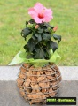 Prima-květináče gabionové květináče gabionový truhlík samozavlažovací plastové venkovní závěsné
