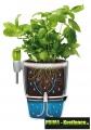 Prima-květináče Elho Brussels Herbs - moderní, designový obal určený pro pěstování bylinek, součástí květináče jsou speciální nerezové nůžky samozavlažovací plastové venkovní závěsné