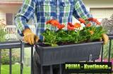 Prima-květináče Plastový, levný, kvalitní, samozavlažovací truhlíky Fantazie samozavlažovací plastové venkovní závěsné