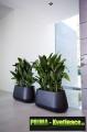 Prima-květináče Truhlíky ELHO Pure Cone Long – moderní, designové, venkovní, velké, plastové obaly na květináče, vonkajšie, veľké, črepniky samozavlažovací plastové venkovní závěsné