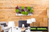 Prima-květináče vertikální květináče, kaskádové venkovní plastové květináče, kaskádové zahrady Minigarden samozavlažovací plastové venkovní závěsné