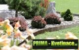 Prima-květináče plastový obrubník, zahradní palisáda Prosperplast samozavlažovací plastové venkovní závěsné