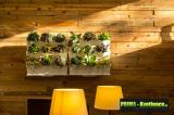 Prima-květináče vertikální květináče, kaskádový květináč na jahody, zelené stěny, vertikální záhon Minigarden samozavlažovací plastové venkovní závěsné