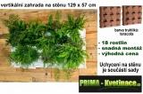 Vertikální zahrada na stěnu Minigarden teracota 129 x 57 cm