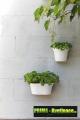 Prima-květináče levný nástěnný květináč, květináče na zeď, stěnu, stěny, truhlíky na balkón na zeď ELHO samozavlažovací plastové venkovní závěsné