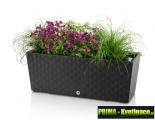 Prima-květináče samozavlažovací truhlíky, samozavlažovací truhlík, truhlík samozavlažovací, zavlažovací truhlíky, podzimní truhlíky, truhlík na květiny, plastové truhlíky, truhlík na bylinky, zahradní truhlíky, okrasné truhlíky venkovní truhlíky samozavlažovací plastové venkovní závěsné