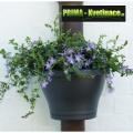 Prima-květináče unikátní, levné květináče květníky na okapové roury, vyrobené z kvalitního plastu s miskou, květník na okapové svody ELHO samozavlažovací plastové venkovní závěsné