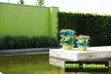 Prima-květináče unikátní systém vertikálních květináčů, bylinková zahrádka – to je vaše zdravá výživa, květináče na bylinky, pokojové rostliny, vhodné na pěstování jahod, sada na pěstování bylinek ELHO samozavlažovací plastové venkovní závěsné
