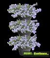 Prima-květináče kvalitní nástěnný vertikání květináč, květináče na zeď, stěnu, stěny ELHO samozavlažovací plastové venkovní závěsné