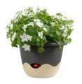 Prima-květináče Plastový samozavlažovací květináč Mareta 30 - závěsný Plastia samozavlažovací plastové venkovní závěsné