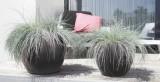 Prima-květináče Květináče ELHO Pure Soft Round Wheels – moderní, venkovní, velké květináče, vonkajšie, veľké, kvetináče, črepníky samozavlažovací plastové venkovní závěsné