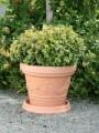 Prima-květináče Mrazuvzdorný plastový květináč Inga – moderní, velké, venkovní, vonkajšie, kulaté, květináče na terasy samozavlažovací plastové venkovní závěsné