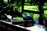 Prima-květináče unikátní designová nádoba, pěstování zeleniny, květin a bylin, pařeniště, květináče, truhlíky, květníky ELHO samozavlažovací plastové venkovní závěsné