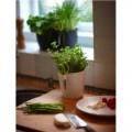 Prima-květináče Elho Brussels Herbs - moderní, designový obal určený pro pěstování bylinek, součástí obalu jsou speciální nerezové nůžky, vaše bylinková zahrádka – vaše zdravá výživa! samozavlažovací plastové venkovní závěsné