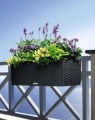 Prima-květináče Samozavlažovací dekorativní květináč Lechuza Balconera 80 - velké, venkovní, hranaté květináče, samozavlažovacie črepníky samozavlažovací plastové venkovní závěsné