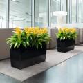 Prima-květináče Samozavlažovací květináče Lechuza Cararo - velké, hranaté, elegantní květináče, samozavlažovacie črepníky samozavlažovací plastové venkovní závěsné