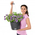 Prima-květináče Samozavlažovací závěsné květináče Lechuza Nido – venkovní, závěsné, dekorační květináče, závesné, vonkajšie, samozavlažovacie črepníky, novinka pro jarní sezónu 2012 samozavlažovací plastové venkovní závěsné