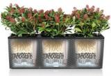 Prima-květináče samozavlažovací truhlík Lechuza Trio Cottage - velké, hranaté, venkovní květináče samozavlažovací plastové venkovní závěsné